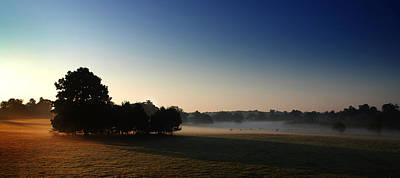 Misty Morn Print by Mark Rogan