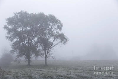 Misty Morning Print by Evelina Kremsdorf