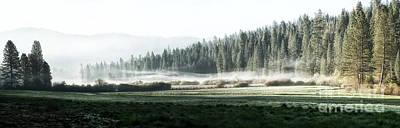 Misty Morning In Yosemite Print by Jane Rix