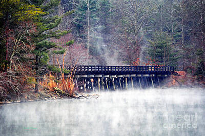 Photograph - Misty Rails by Li Newton