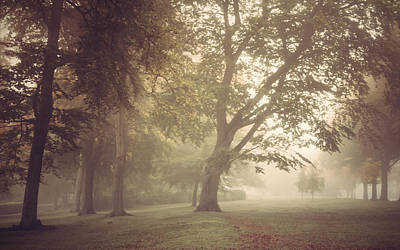 Misty Woodland Clearing Print by Chris Fletcher