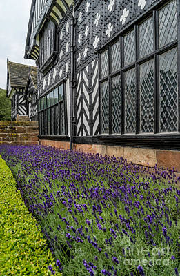 Moat Of Lavender Print by Adrian Evans
