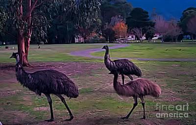 Emu Digital Art - Mob Of Emus by Blair Stuart
