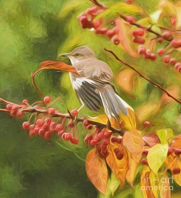 Nature Photograph - Mockingbird And Berries by Kerri Farley