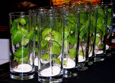Mojitos In The Making Print by Karen Wiles