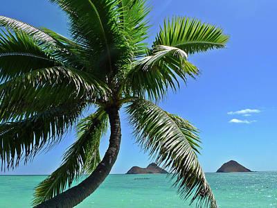 Mokulua Island, Lanikai, Kailua, Oahu Print by Douglas Peebles