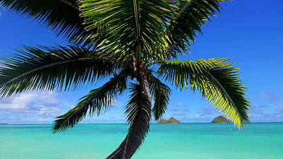 Mokulua Islands, Lanikai, Kailua, Oahu Print by Douglas Peebles