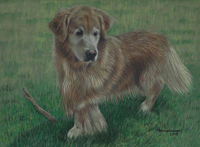 Molly And Her Stick Print by Debbie Stonebraker