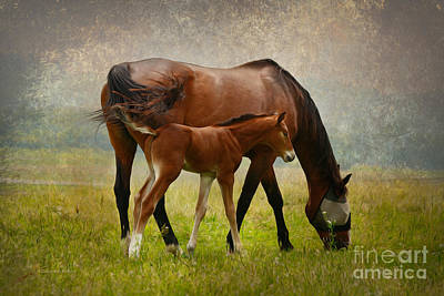 Mom And Baby Print by Deborah Benoit