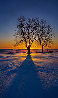 Bluesky Photograph - Moments Of Clarity by Phil Koch