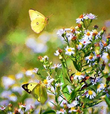 Butterfly Photograph - Moments Of Magic by Kerri Farley