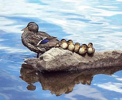 Momma And Babies Original by Joy Nichols