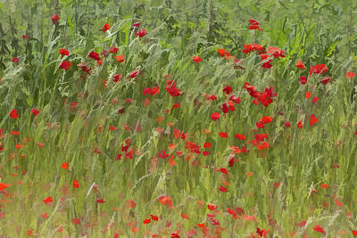 Corporate Art Photograph - Monet Poppies IIi by David Letts