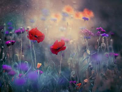 Poppies Photograph - Monet's Garden II by Magda  Bognar
