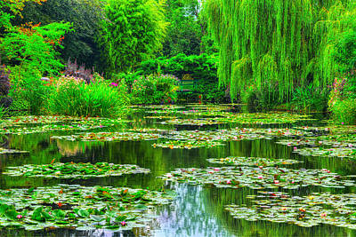 Willow Photograph - Monet's Lily Pond by Midori Chan