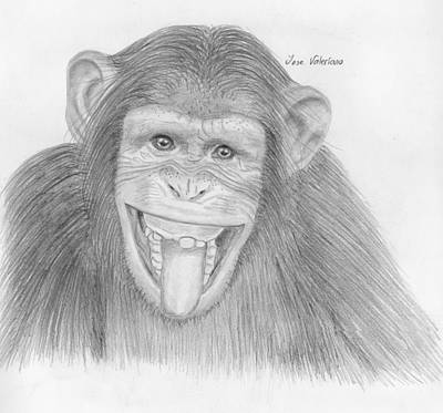Chimpanzee Drawing - Monkeying Around by M Valeriano