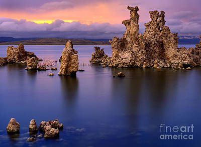 Vines Photograph - Mono Lake Afterglow by Inge Johnsson