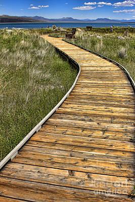 Mono Lake Boardwalk 2 Print by Jason Abando