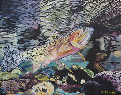 Fish - Montana Cutthroat - Majesty Of The Stream Print by Haley Mueller