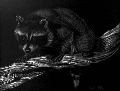 Raccoon Drawing - Moonlight Bandit by Dustin Miller