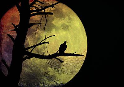 Vulture Digital Art - Moonlight Mile by Bill Cannon