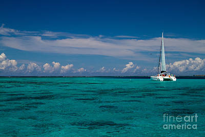 Moorea Lagoon No 16 Print by David Smith