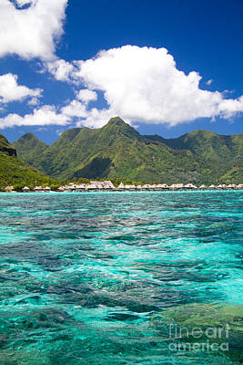 Moorea Photograph - Moorea Lagoon No 2 by David Smith