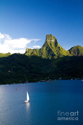 Moorea Photograph - Moorea Lagoon No 20 by David Smith