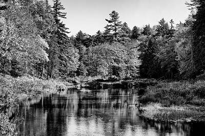 Tree Photograph - Moose River Calm - Old Forge New York by David Patterson