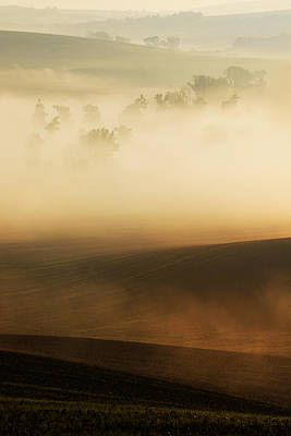 Moravian Impresion With Trees Print by Jaroslaw Blaminsky