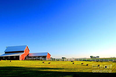 A Sunny Morning Photograph - Morning At The Farm by Steven Reed