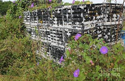 Morning Glories And Crab Traps Print by Theresa Willingham