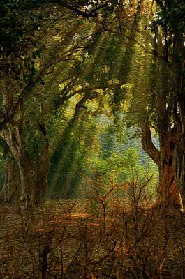 Morning Glory Original by Manjot Singh Sachdeva