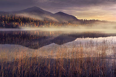 Morning In Adirondacks Print by Magda  Bognar
