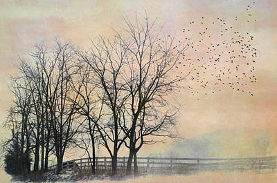 Flock Of Bird Photograph - Morning Magic by Kathy Jennings