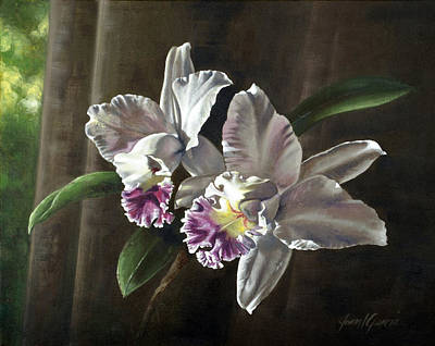 Morning Orchids Print by Joan Garcia
