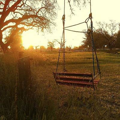 Rural Scenes Photograph - Morning Swing by CML Brown