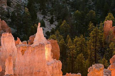 Bryce Canyon National Park Photograph - Morning Hoodoos by Joseph Smith