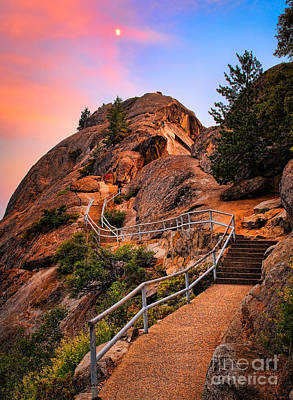 Moro Rock Path Print by Inge Johnsson