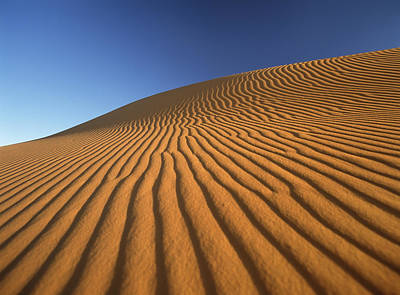 Simple Beauty In Colors Photograph - Morocco, Detail Of Sand Dune At Dawn by Ian Cumming