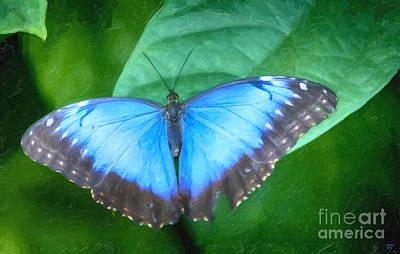 Butterfly Digital Art - Morpho Blue Butterfly by David Millenheft