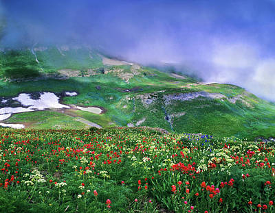 Mosaic Photograph - Mosaic Of Lingering August Snow, Low by Howie Garber