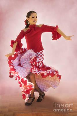 Mosaico Photograph - Mosaico Flamenco At Tlaquepaque by Priscilla Burgers