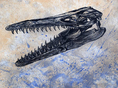 Snout Digital Art - Mosasaurus Dinosaur Skull by Harm Plat