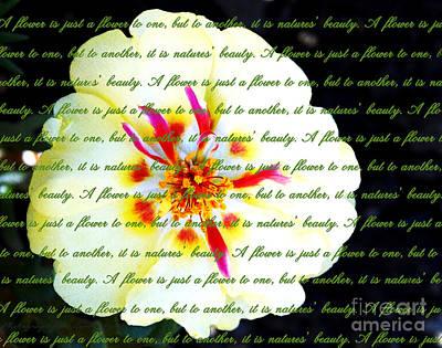 Rose Digital Art - Moss Rose Portulaca by Gena Weiser