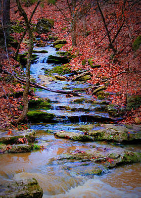 Mossy Creek Print by Cricket Hackmann