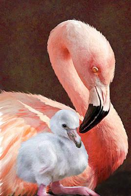 Baby Bird Digital Art - Mother And Baby Flamingo by Jane Schnetlage