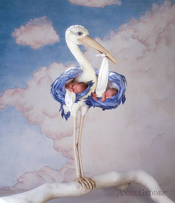 Bird Photograph - Mother Stork by Anne Geddes