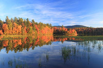 Mount Monadnock Howe Reservoir Foliage Print by John Burk