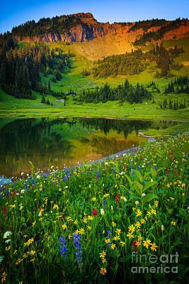 Botanic Photograph - Mount Rainier Lake by Inge Johnsson